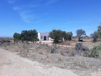 Mexilhoeira da Carregação Lagoa (Algarve) villa picture