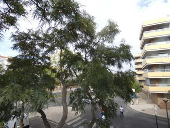 Mexilhoeira da Carregação Lagoa (Algarve) apartment picture