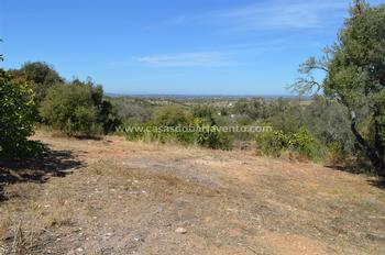Seixosas Lagoa (Algarve) terrein foto