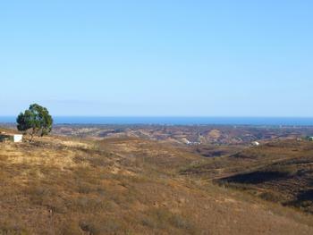 Lagoa Lagoa (Algarve) terrain picture