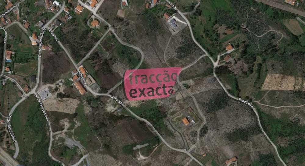 Tumio Paredes De Coura tomt photo 114780