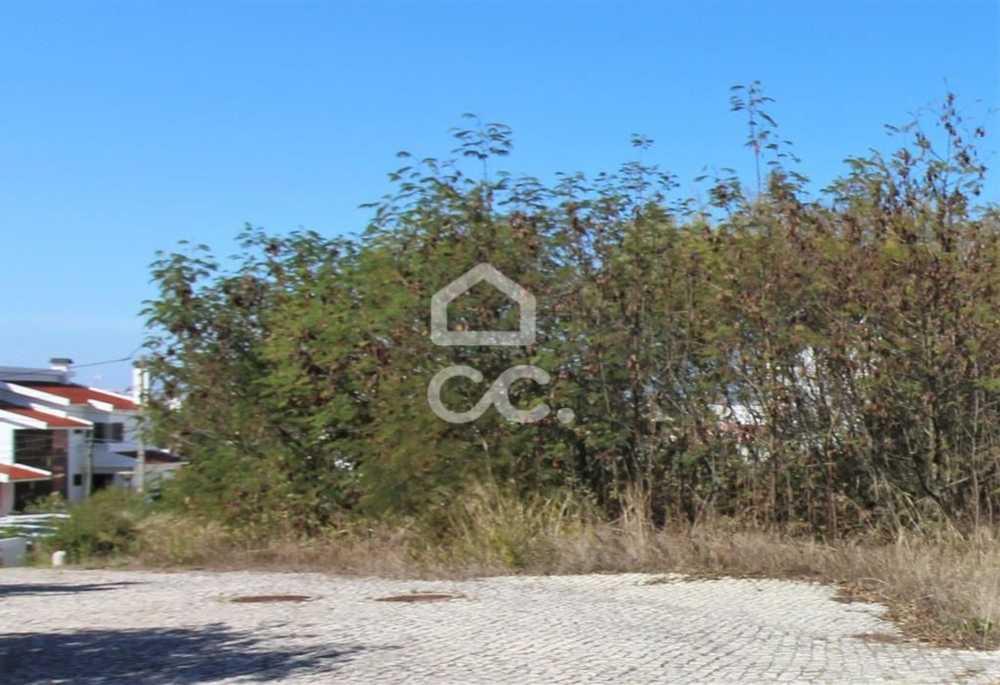 Trafaria Almada terrain picture 112775