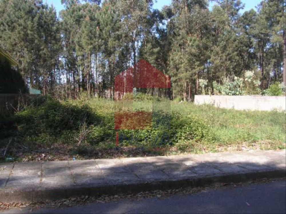 Lage Vila Verde terrain picture 115360