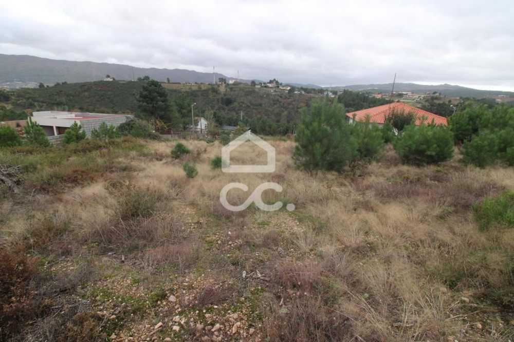 Vidago Chaves terrain picture 112683