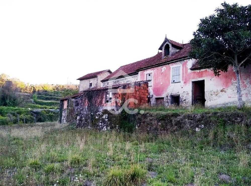 Pinheiro Oliveira De Frades Haus Bild 113017