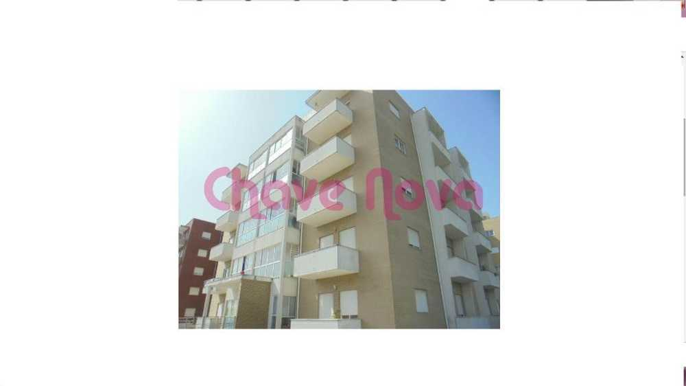 Albergaria-A-Velha Albergaria-A-Velha appartement photo 113753