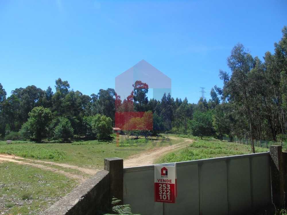 Anais Ponte De Lima terreno foto #request.properties.id#
