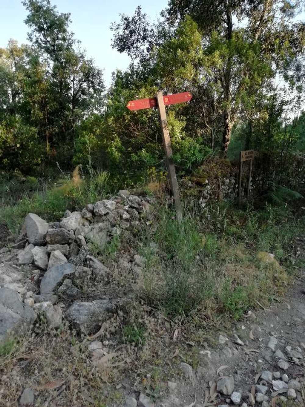 Portalegre Portalegre terrain picture 114862