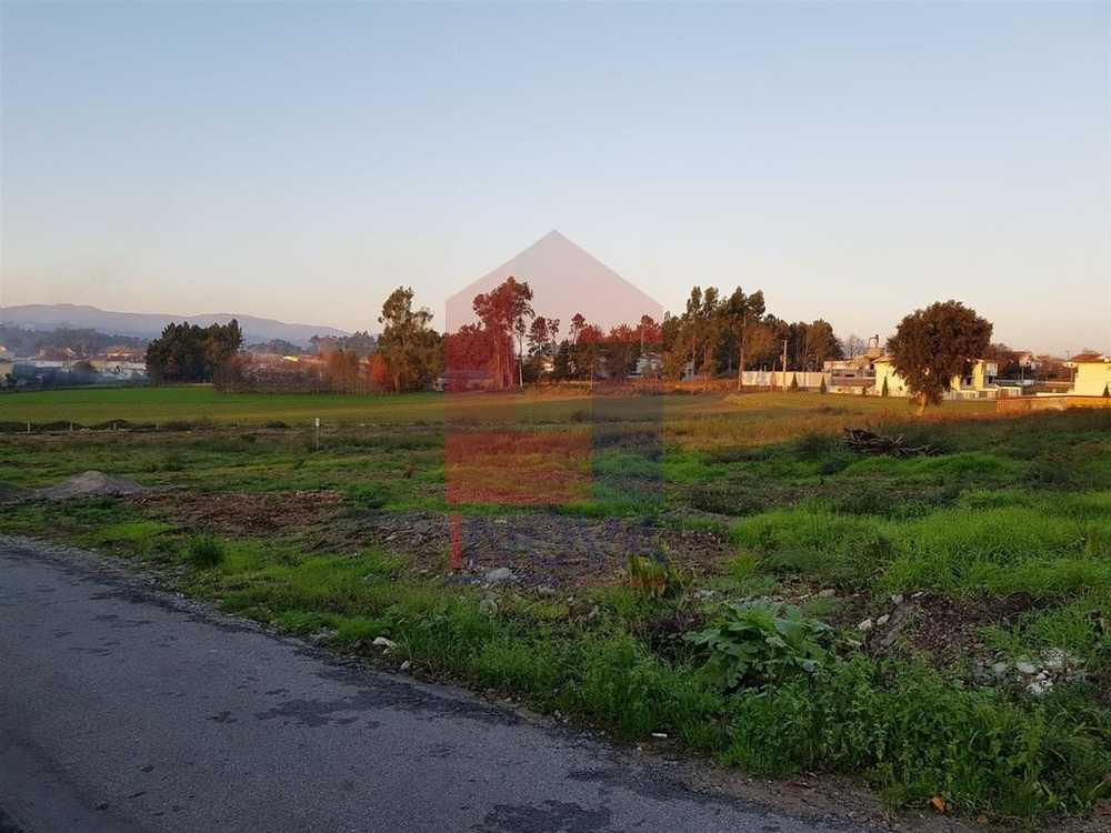 Cruzeiro Vila Verde terrain picture 115481
