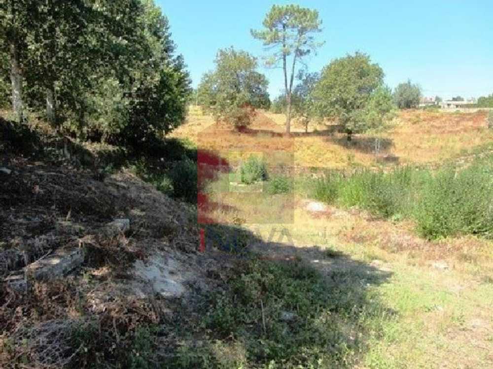 Ponte Vila Verde terrain picture 115071