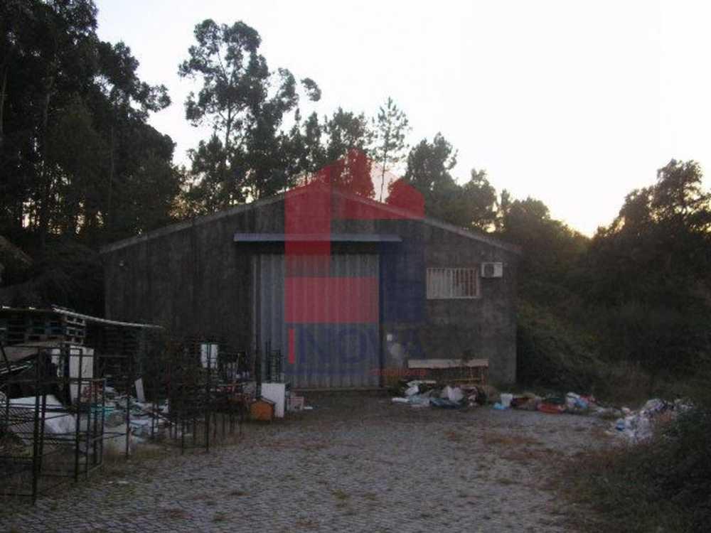 Loureira Vila Verde house picture 115424