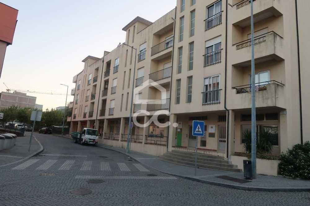 Pias Lousada apartment picture 112876