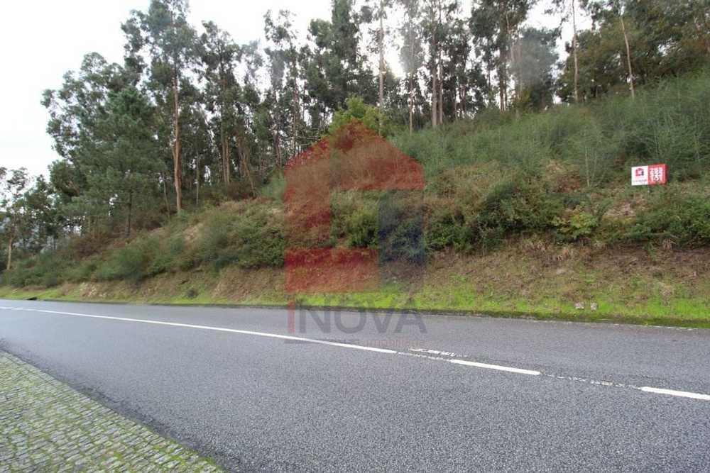 Ribeira Vila Verde terrain picture 115808