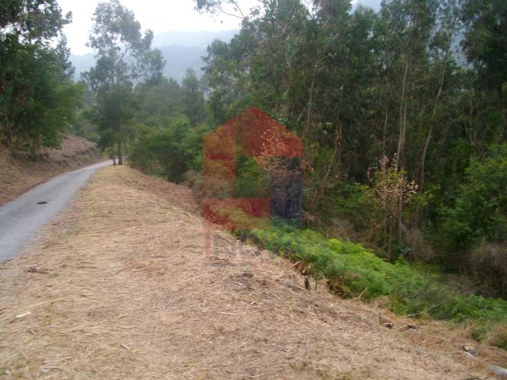 Barroco Vila Verde terrain picture 115201