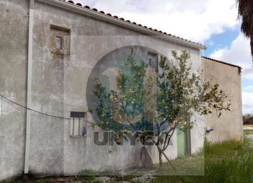 Quinta do Ribeirinho Castelo De Vide terreno foto #request.properties.id#