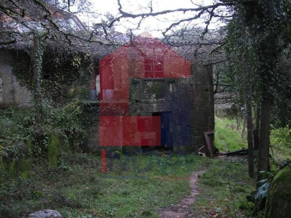 Ribeiro Vila Verde house picture 115313