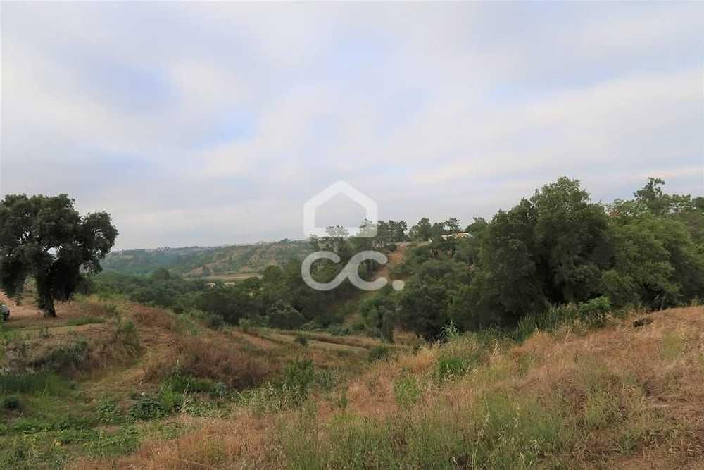 Vale do Paraiso Azambuja terrain picture 112645