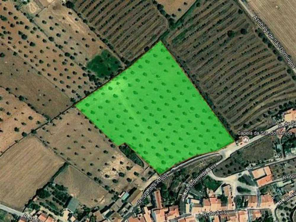 Cabeço de Vide Fronteira 土地 照片 #request.properties.id#