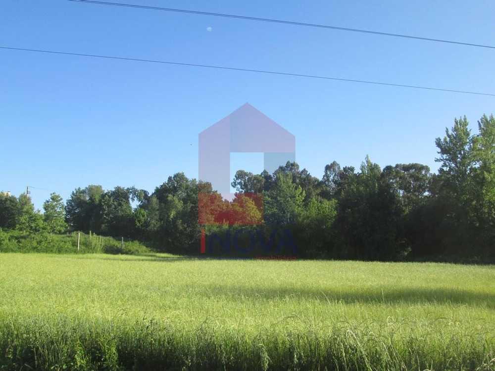 Soutelo Vila Verde terrain picture 115157
