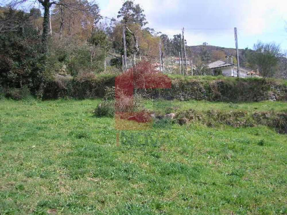 Coucieiro Vila Verde terrain picture 115468
