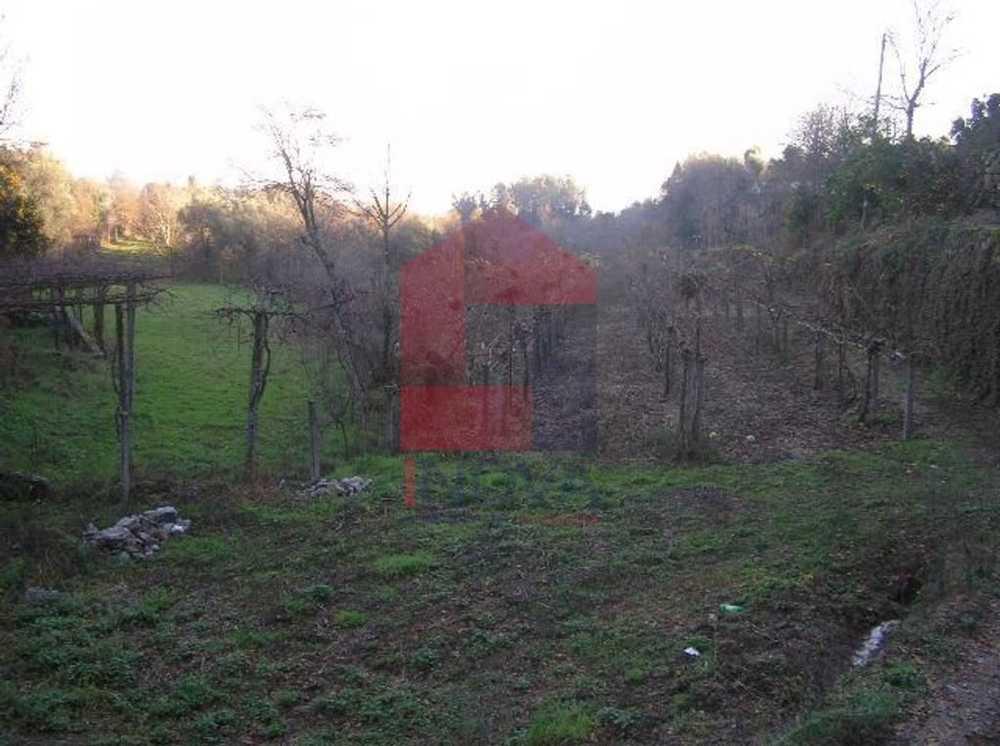 Barreirosa Vila Verde terrain picture 115429