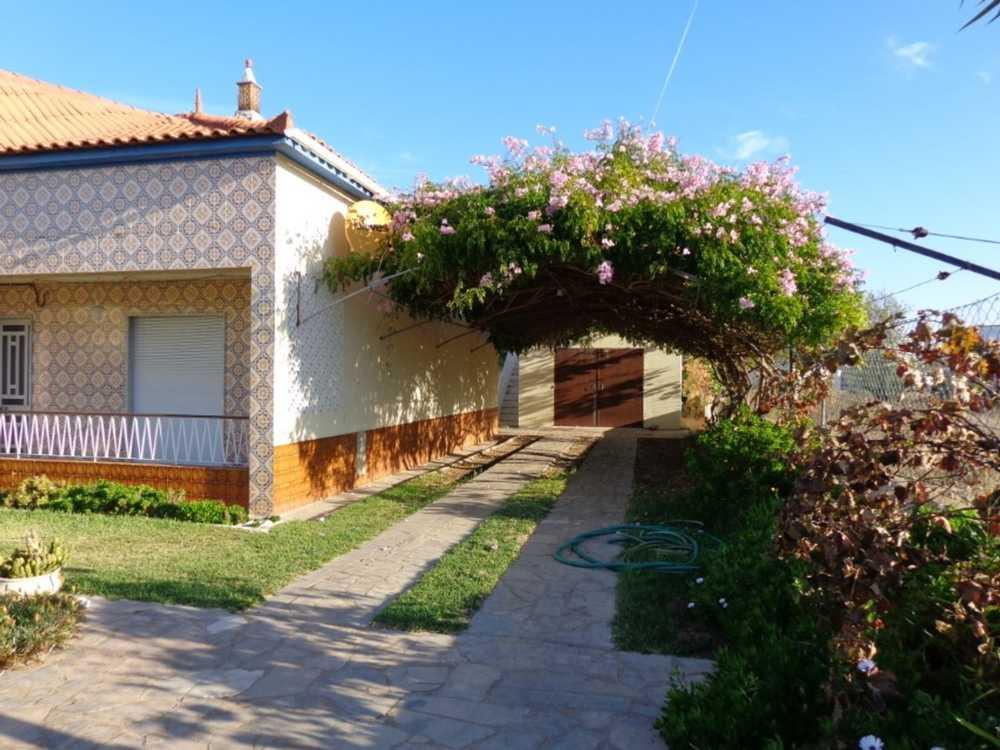 Estombar Lagoa (Algarve) hus photo 116026