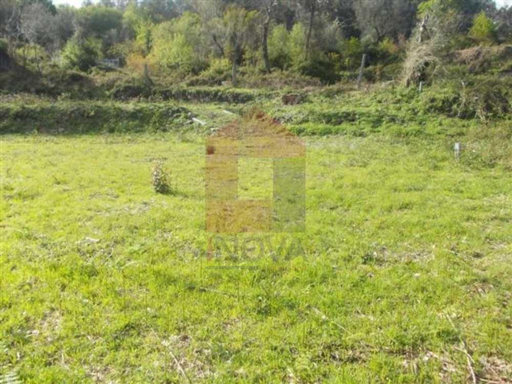 Esqueiros Vila Verde terrain picture 115213