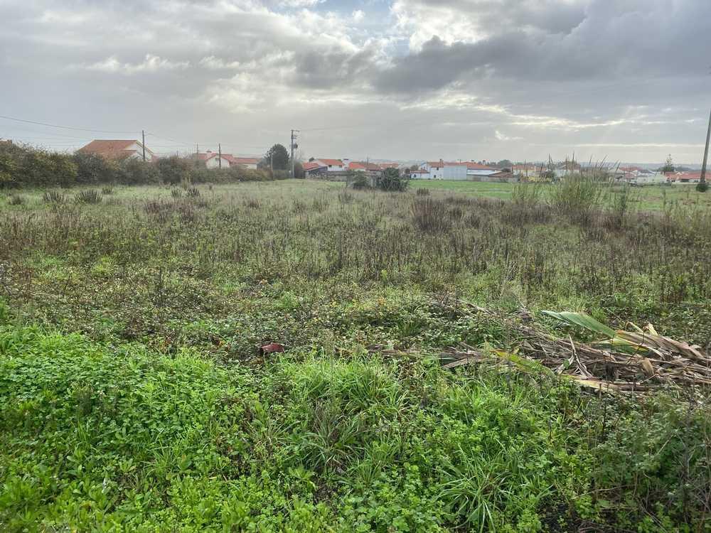 Caldas da Rainha Caldas Da Rainha terreno foto #request.properties.id#