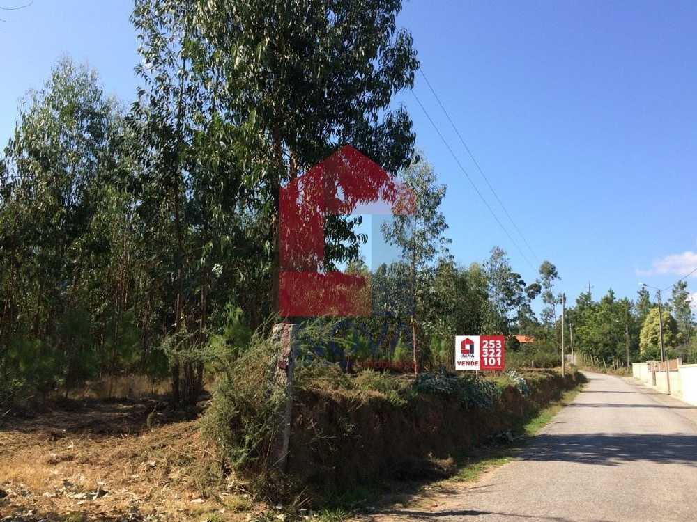 Marrancos Vila Verde terrain picture 115169