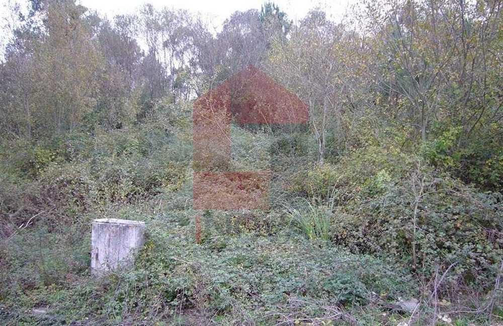 Vila Ponte Da Barca terrain picture 115643