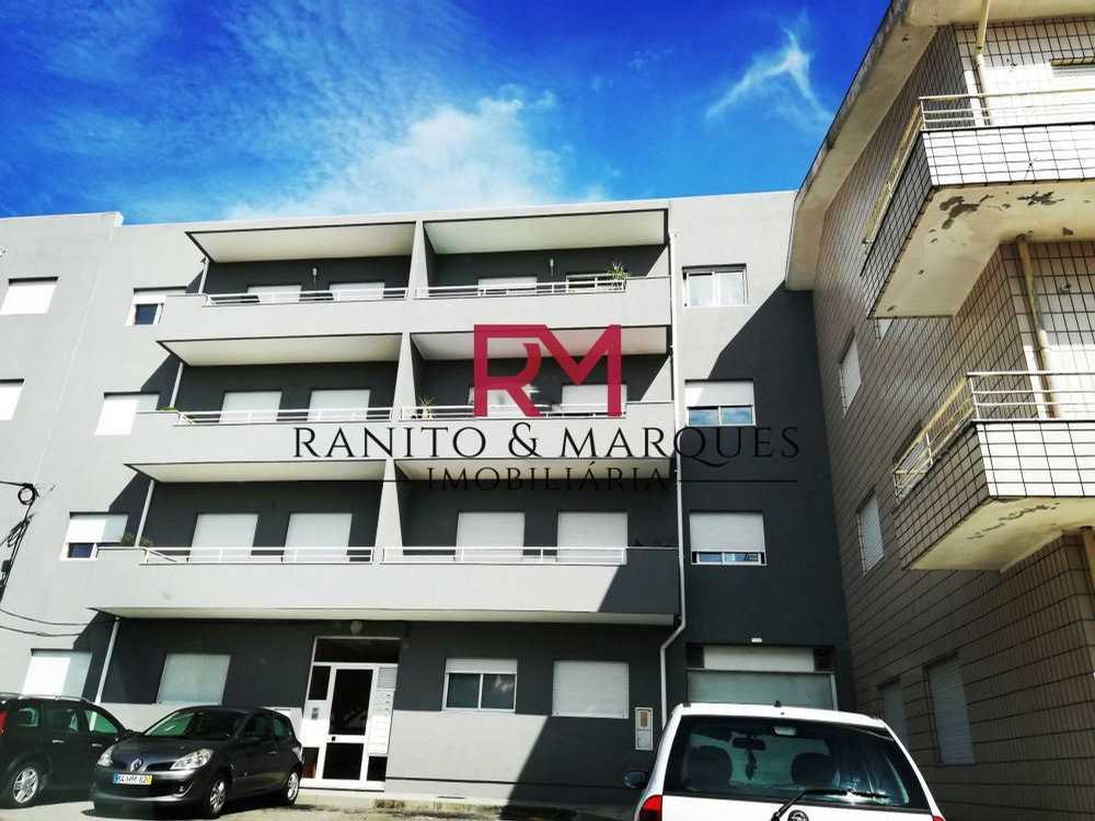 São Pedro Nordeste apartment picture 113815