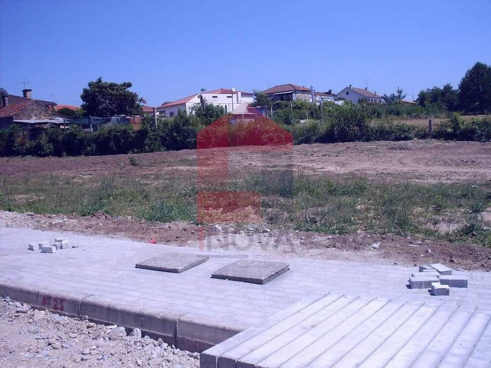 Eirado Vila Verde terrain picture 115314