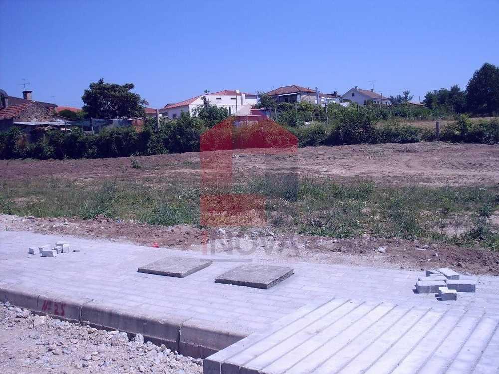 Barreirosa Vila Verde terrain picture 115311