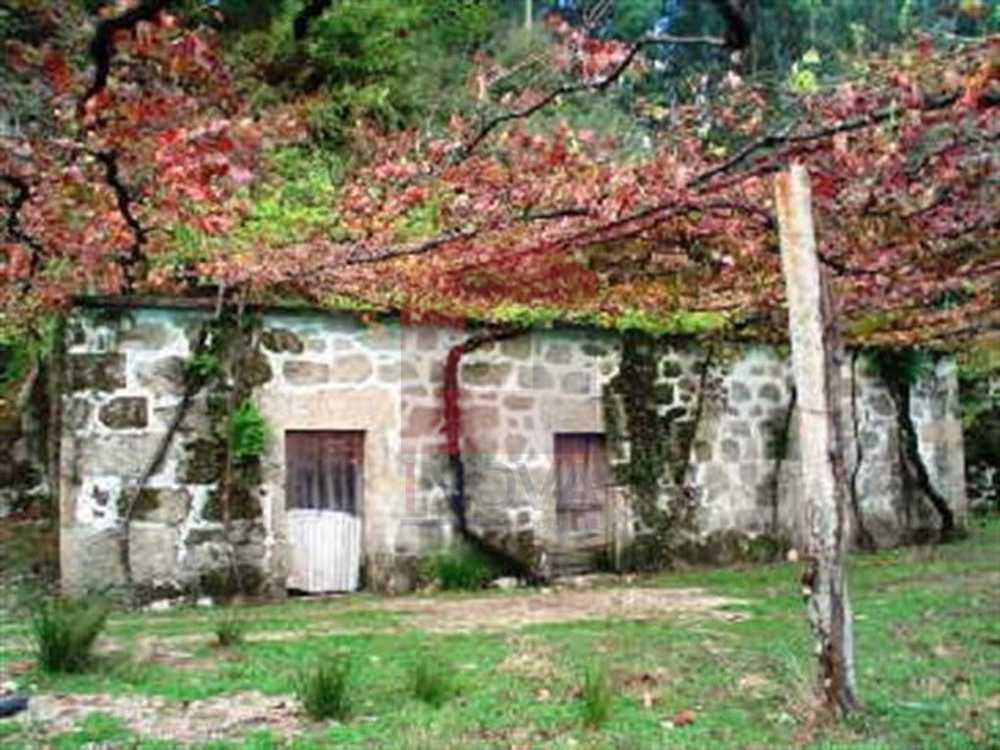 Dossãos Vila Verde house picture 115476
