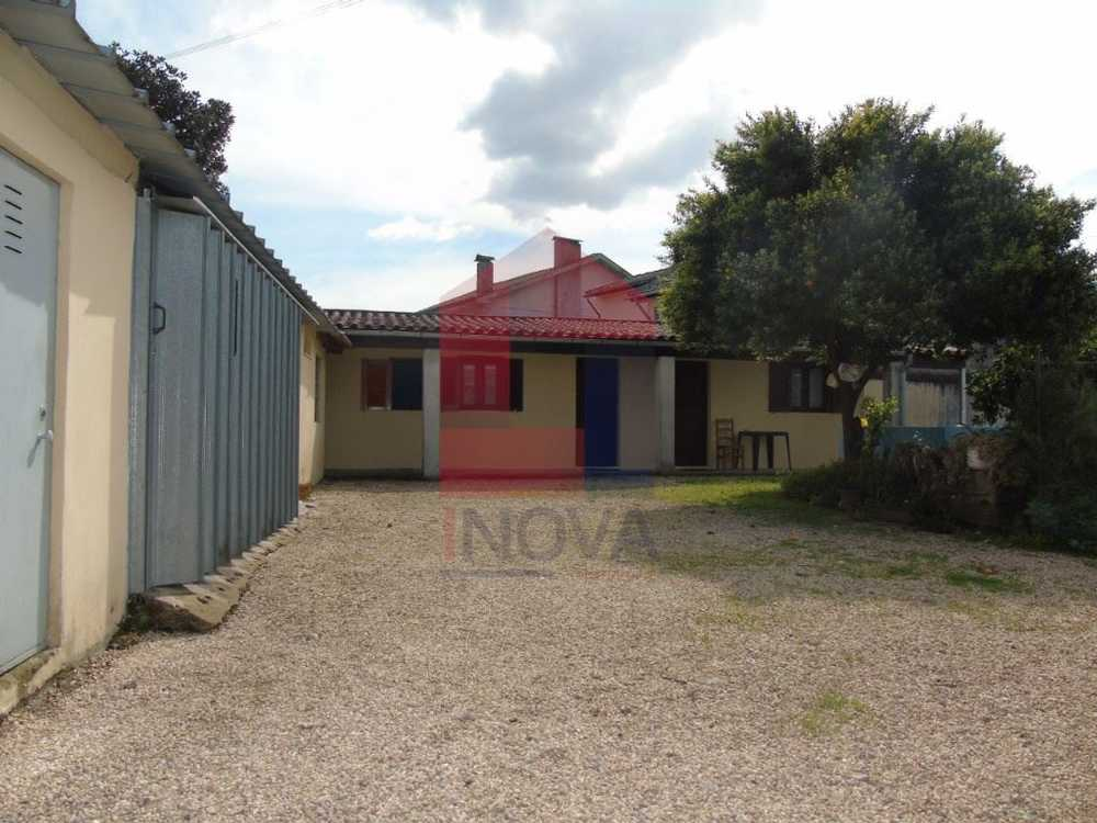 Loureira Vila Verde house picture 115586
