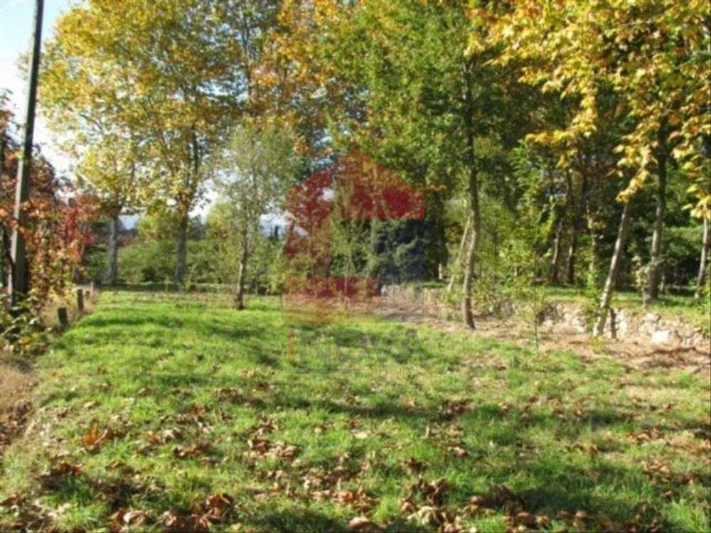 Ponte Vila Verde terrain picture 115289