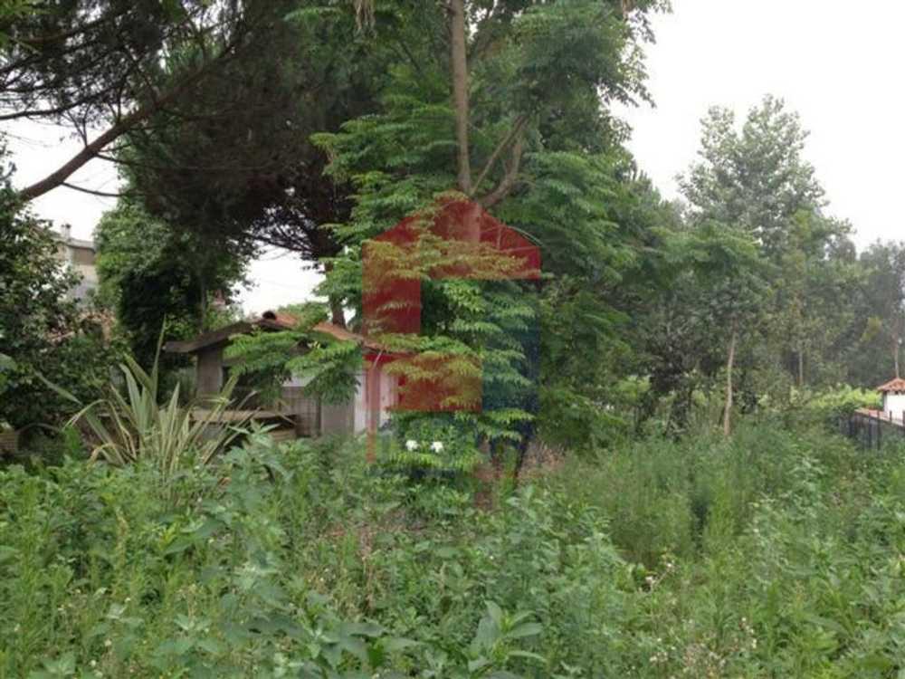 Lanhas Vila Verde terrain picture 115234