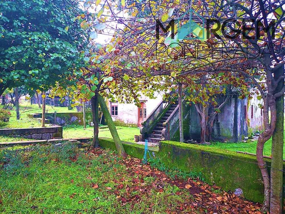 Vila do Porto Vila Do Porto estate picture 116076