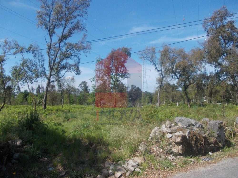 Soutelo Vila Verde terrain picture 115253