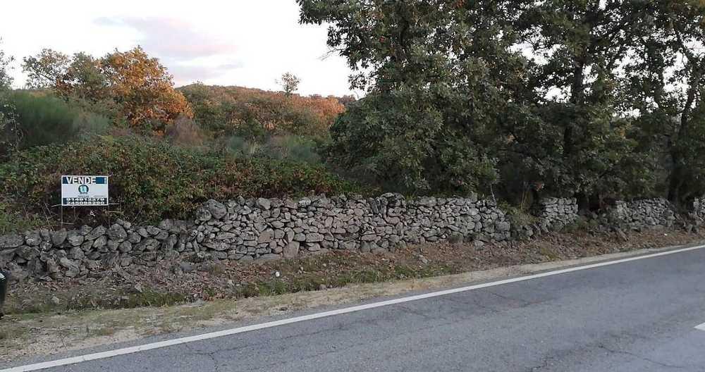 Carreiras Portalegre terrain picture 114866