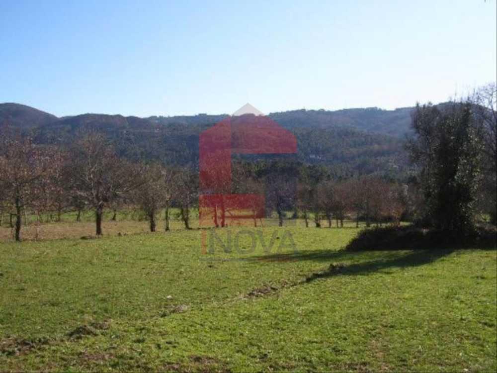 Ponte Vila Verde terrain picture 115348