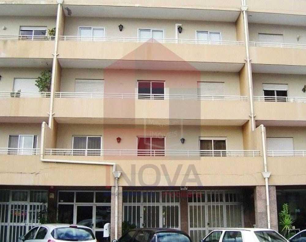 Quinta das Carvas Bragança house picture 115659
