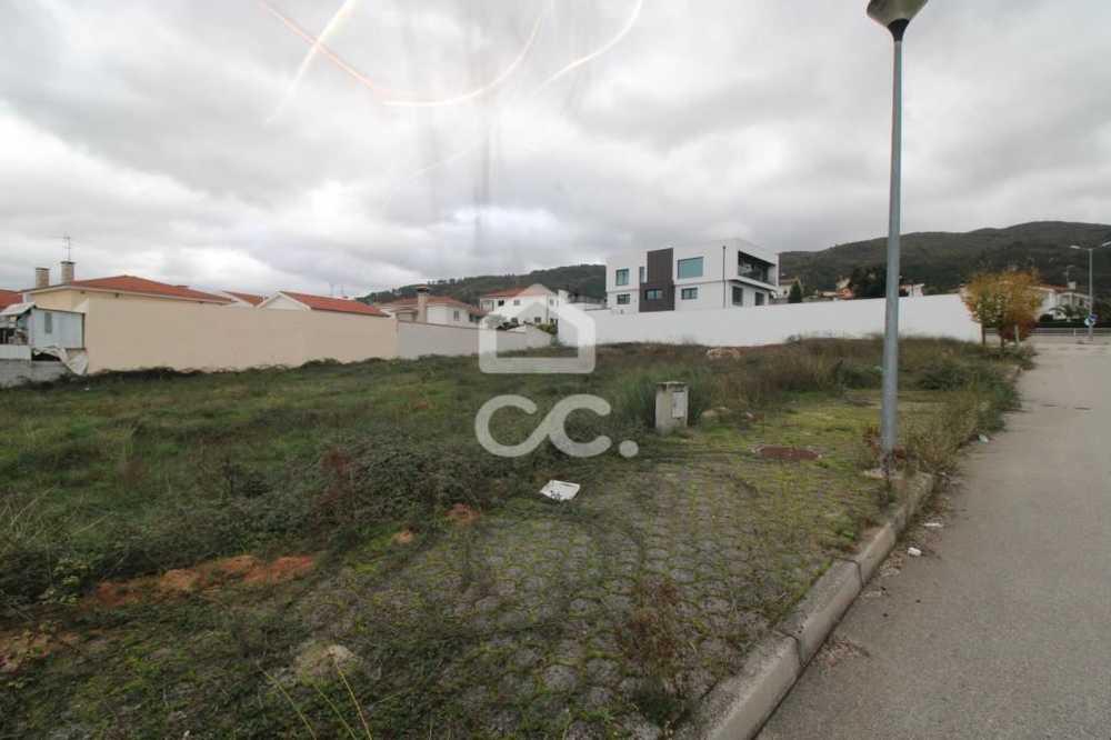 Calvão Chaves terrain photo 112679