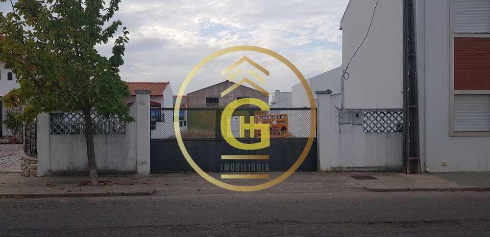 Alpiarça Alpiarça 屋 照片 #request.properties.id#