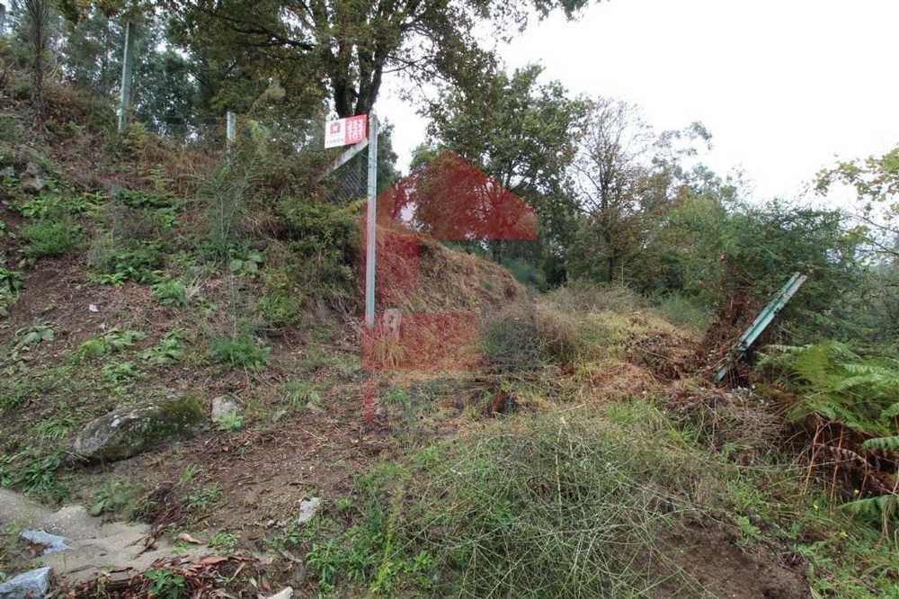 Ribeira Vila Verde terrain picture 115767