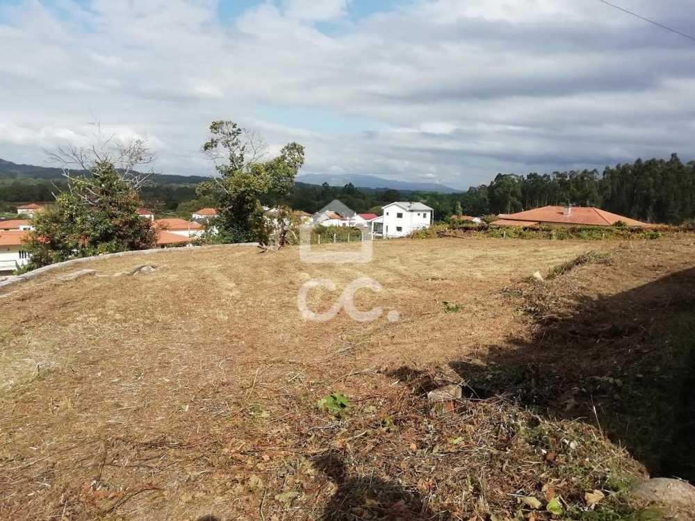 Baroso Valença terrain picture 112993