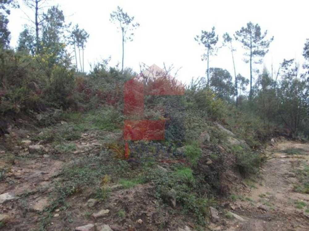 Telheirinhas Vila Verde terrain picture 115198