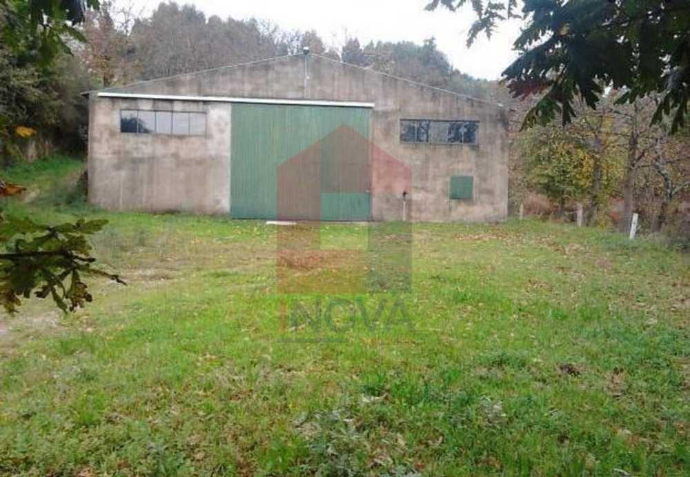 Lajos Vila Verde house picture 115147