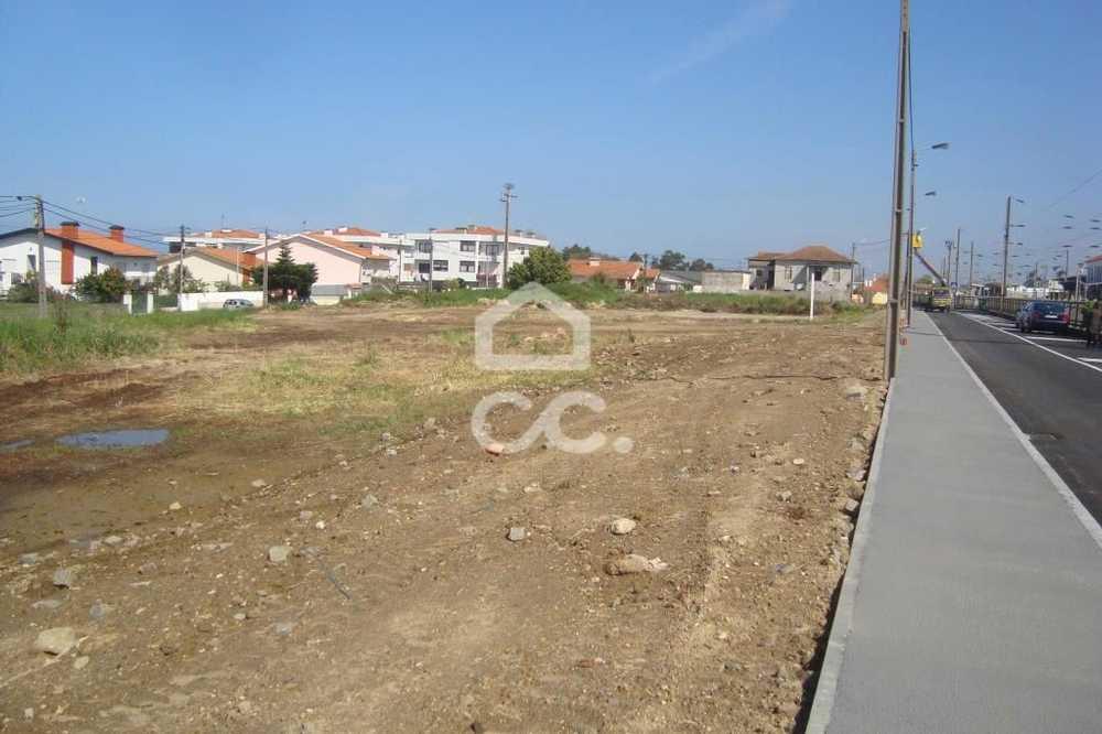 Pardeiro Almodôvar terrain photo 112797