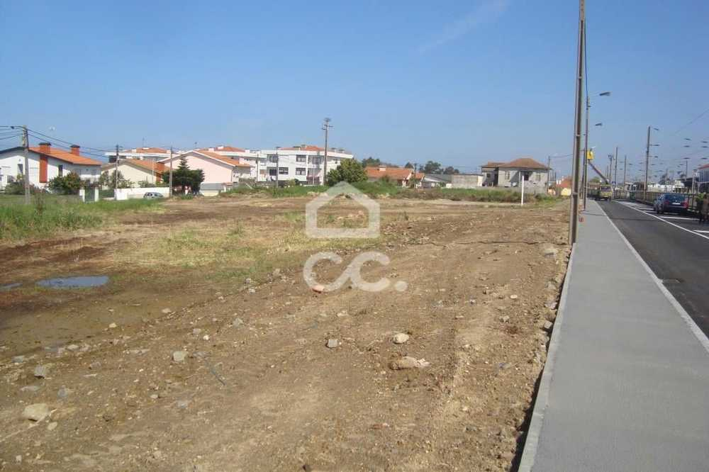 Pardeiro Almodôvar 土地 照片 #request.properties.id#